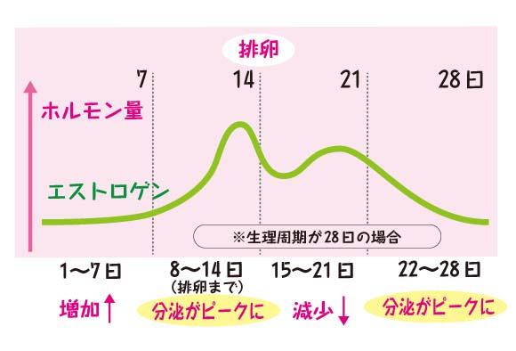 エストロゲンの分泌量を表したグラフ