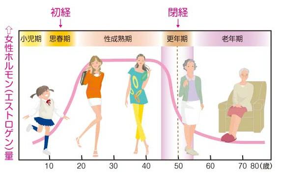 年齢による女性ホルモン量の推移