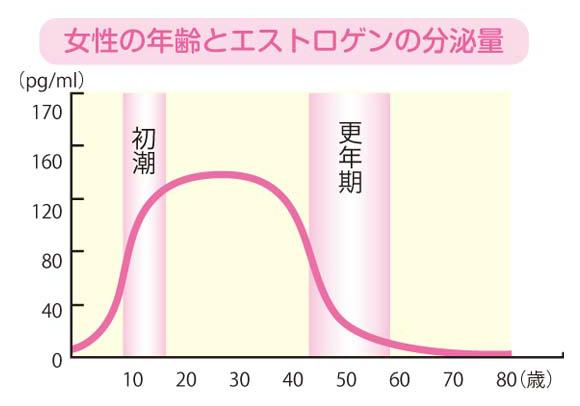 女性の年齢とエストロゲンの分泌量