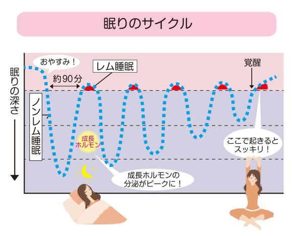 眠りのサイクル
