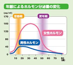 年齢によるホルモン分泌量の変化