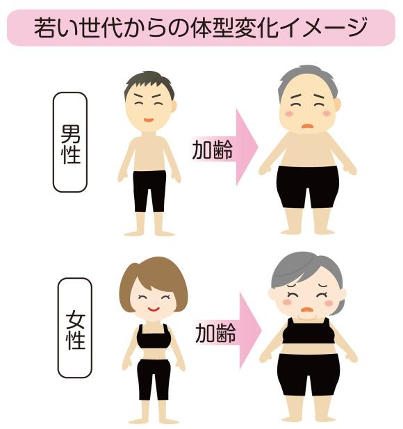 若い世代からの体型変化イメージ