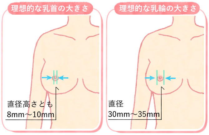 理想的な乳輪と乳首の大きさ