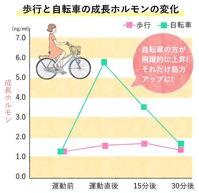 歩行と自転車の成長ホルモンの変化