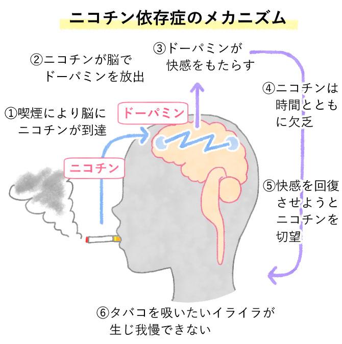 ニコチン依存症のメカニズム